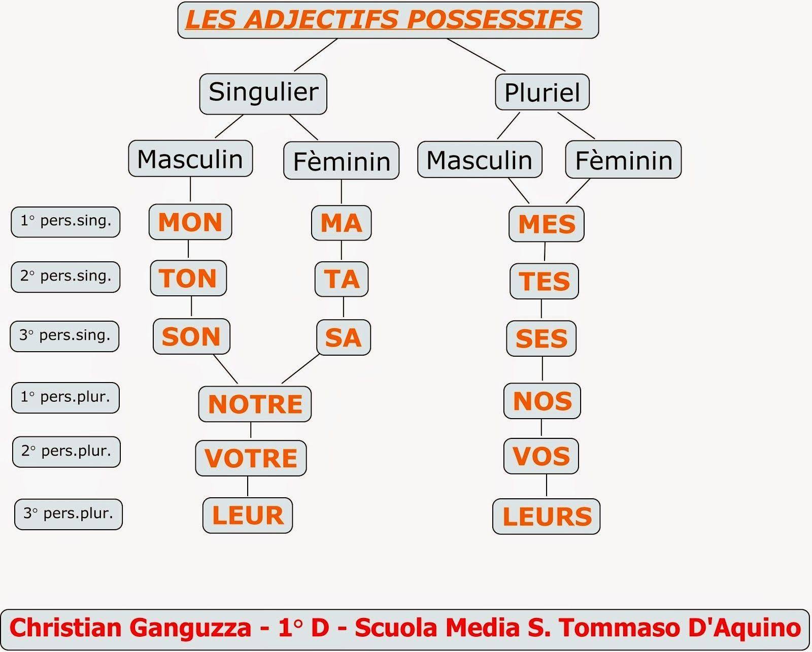 Francese Aggettivi Possessivi Imparare Il Francese Grammatica Francese Lezioni Di Francese