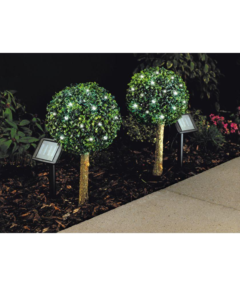 Green Solar Bay Tree Lights Set of 2 at Argos.co.uk