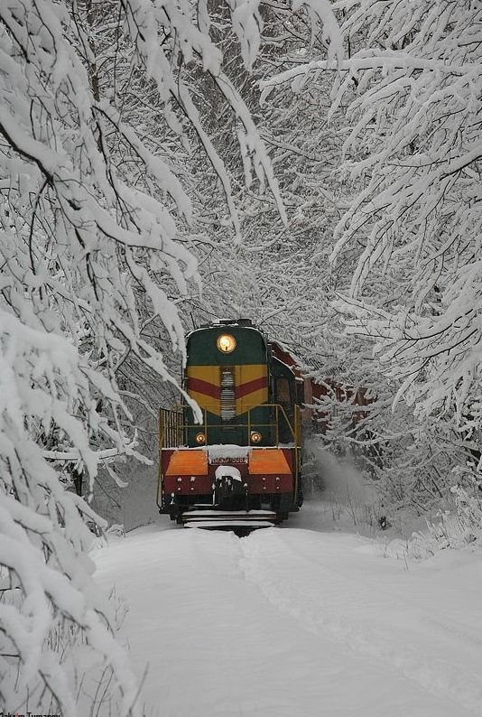 Pin by Alea Greenwood on Winter Train pictures, Train
