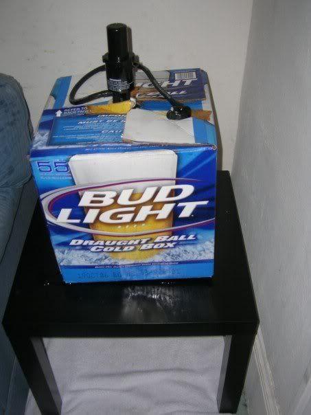 Remember Party Balls Beer Bud Light Bud Och Lighting