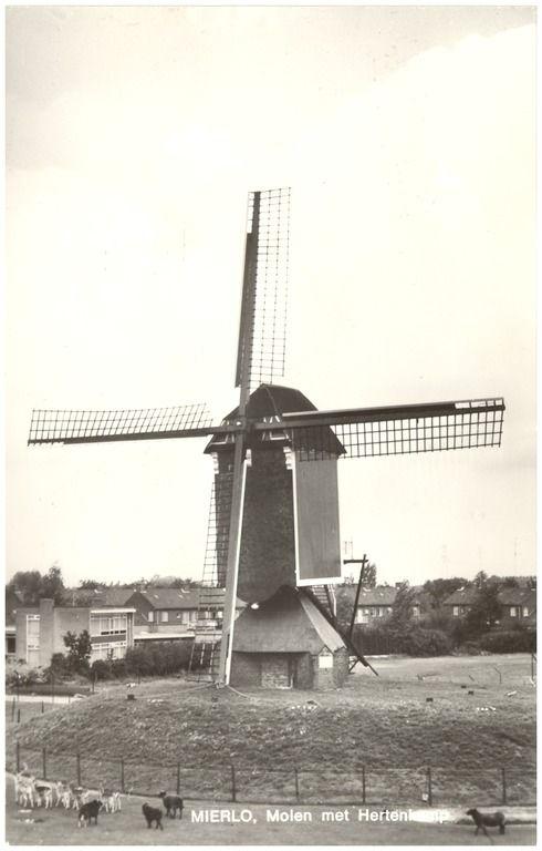 Mierlo, Dorpsstraat 147 Molen met Hertenkamp Jos Pé (uitgever); Vleuten, H.G. v.d. (uitgever) 1970