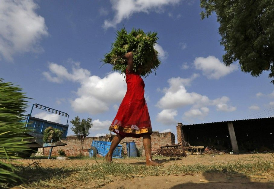 Indias multifaceted wto refusal india things to sell