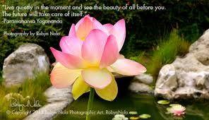 Pin by lisa quinn on spiritual soullove of spirit pinterest spiritual lotus wallpaperbuddha lotusrecovery quoteshealing quoteslotus flowerslotus mightylinksfo Choice Image