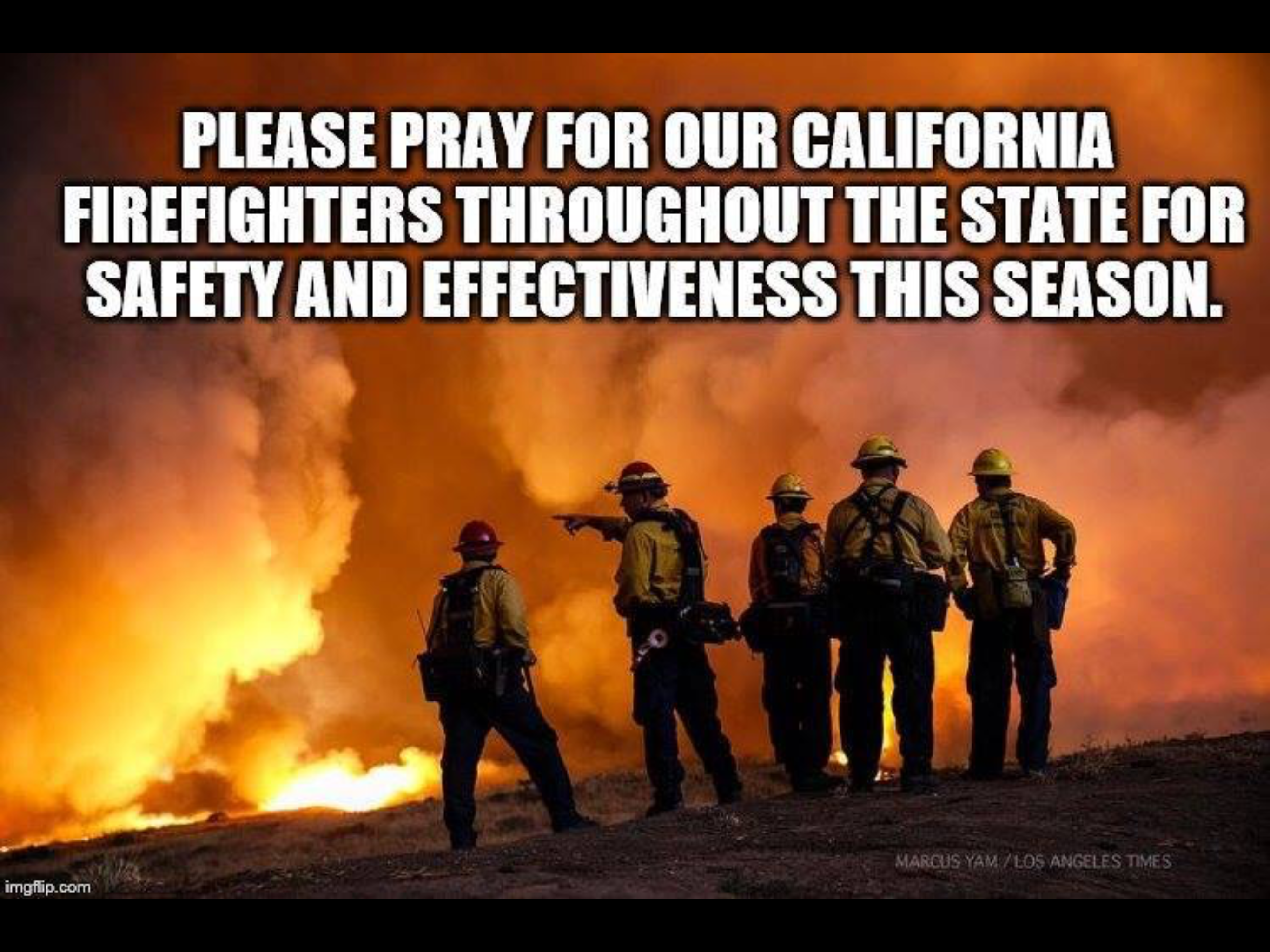 Pin by Judy Jaeger on FIREFIGHTERS Firefighter, Movie