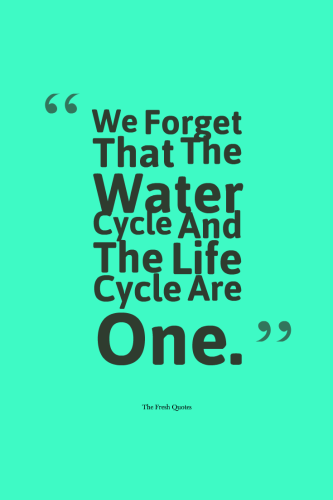 Water Quotes And Save Water Slogans Water Quotes Save