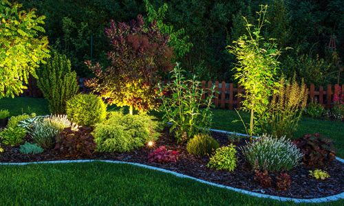 Light Up Your Landscape With Solar Lights Outdoor Landscaping Outdoor Garden Lighting Small Backyard Landscaping