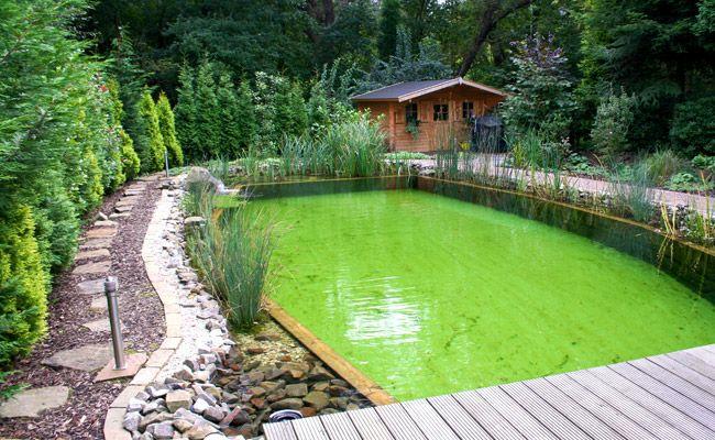 Unique Schwimmteiche von Brakelmann Garten und Landschaftsbau