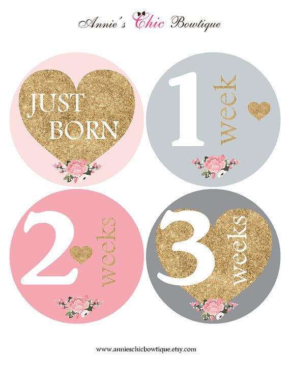 Gold Glitter baby stickers Pink Grey Month by AnniesChicBowtique