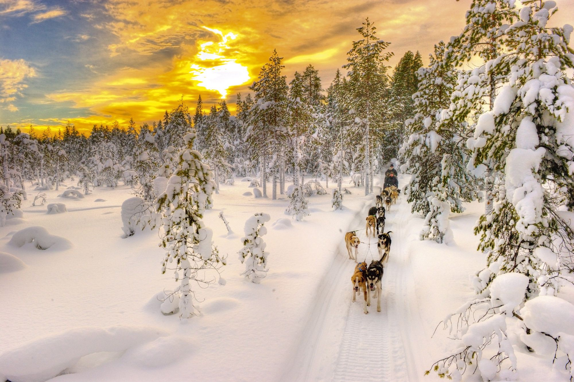 Heart of Lapland_HUndspann