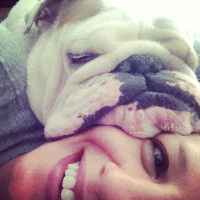 This Is How Otto Wakes Me Up Each Morning Best Feeling Ever