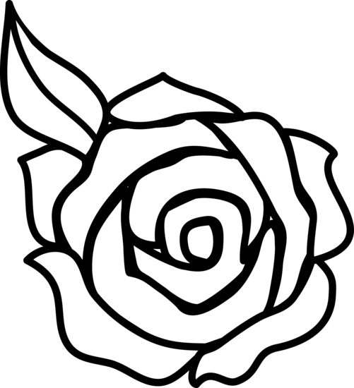 Easy Simple Rose Drawing Image Black And White