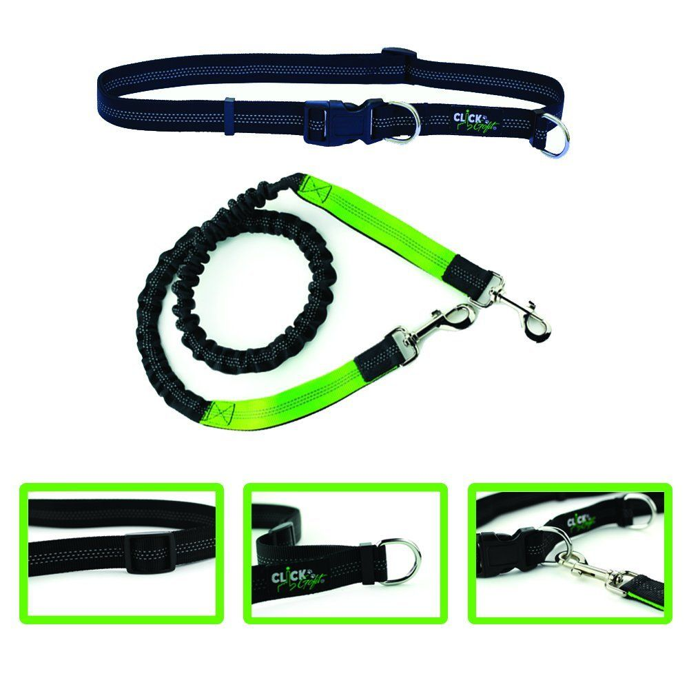 Hands Free Dog Leash by ClickGoFit-Extendible Bungee 48 inch-Reflective Bands-Adjustable Waist Belt-Perfect for Hike Walk or Jog-Exercise with your pet -- Additional info  : Leashes for dogs