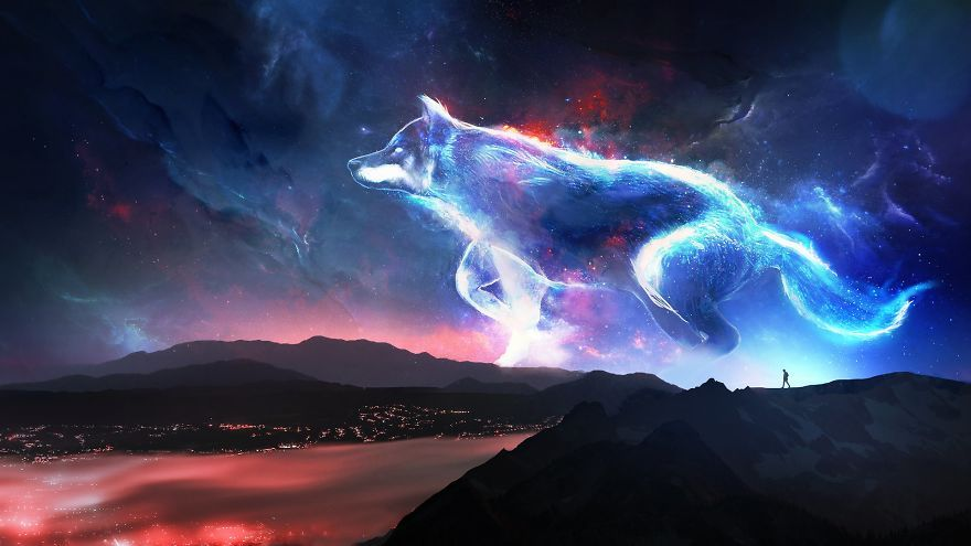 Echo Fantasy Wolf Wolf Background Animal Wallpaper Anime wolf background wallpaper
