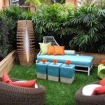 Backyard Rainbow Design