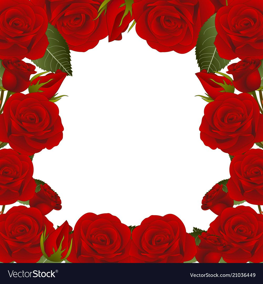Red Rose Flower Frame Border2 Vector Image On Vectorstock Rose Flower Photos Flower Frame Red Rose Flower