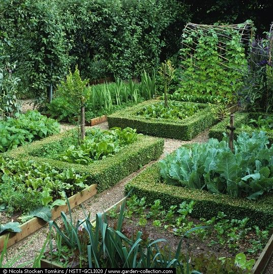 Potager Garden Design Ideas: Vegetable Garden, Potager Garden