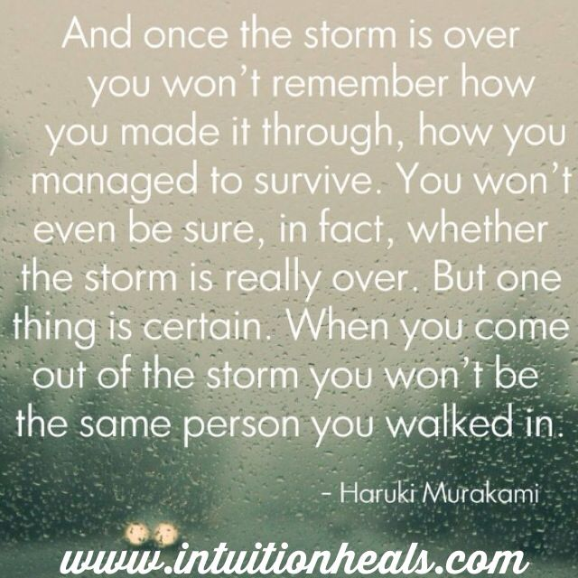 Surviving The Storm Great Quotes Motivational Quotes
