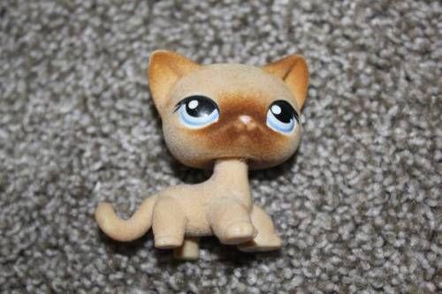 LPS 318 Soft Shorthair Cat w/ Blue EyesRARE Littlest