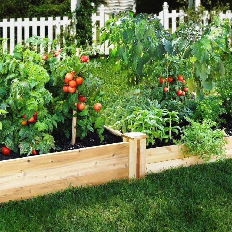 easy diy raised garden bed designs to try raised garden bed ideas