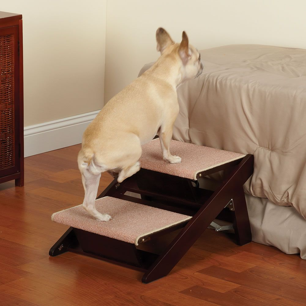 Best Dog Stairs Dog stairs, Pet stairs, Pet ramp