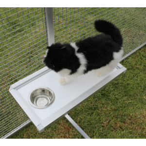 This Is A Fantastic Addition To Any Cat Enclosure Features A
