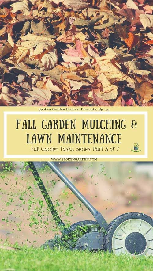 Ep  24 Fall Garden Mulching and Lawn Maintenance is part of garden Tips For Fall - Are mulching and fertilizing on your fall garden task list  Are you aware of why and how to mulch, along with what your lawn needs in the fall to stay healt