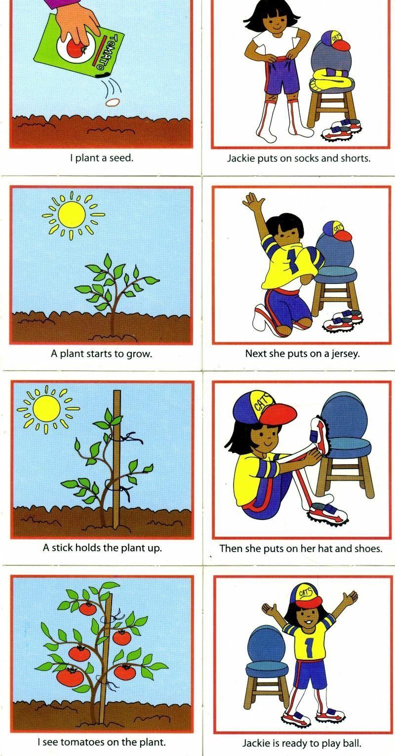 Plantar e vestir