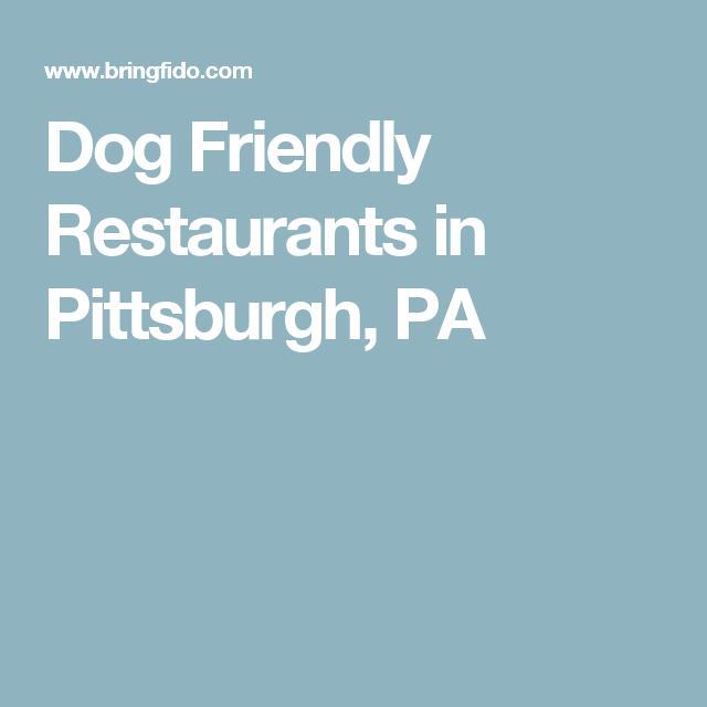 Dog Friendly Restaurants In Pittsburgh Pa