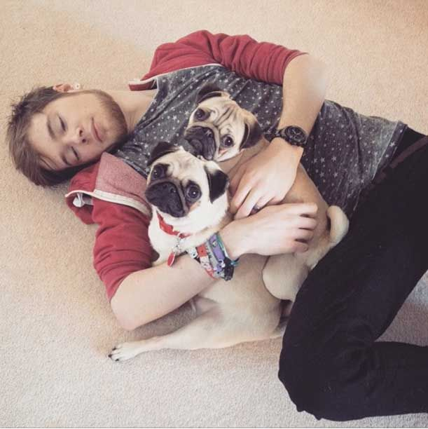 YouTube star DanTDM and his adorable pug babies | All About