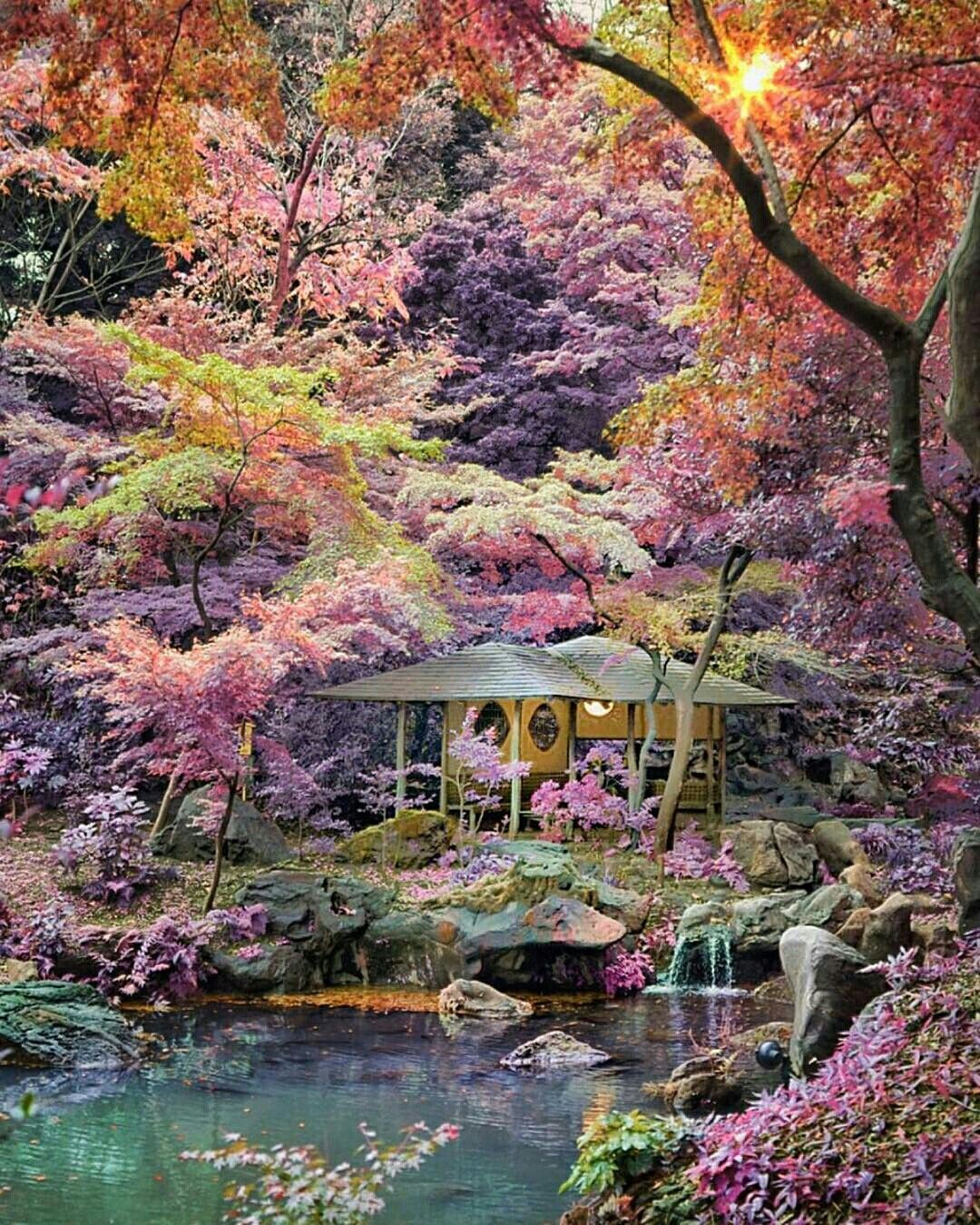 Good Places To Travel November: Rikugien Garden Japan. Late November To Early December