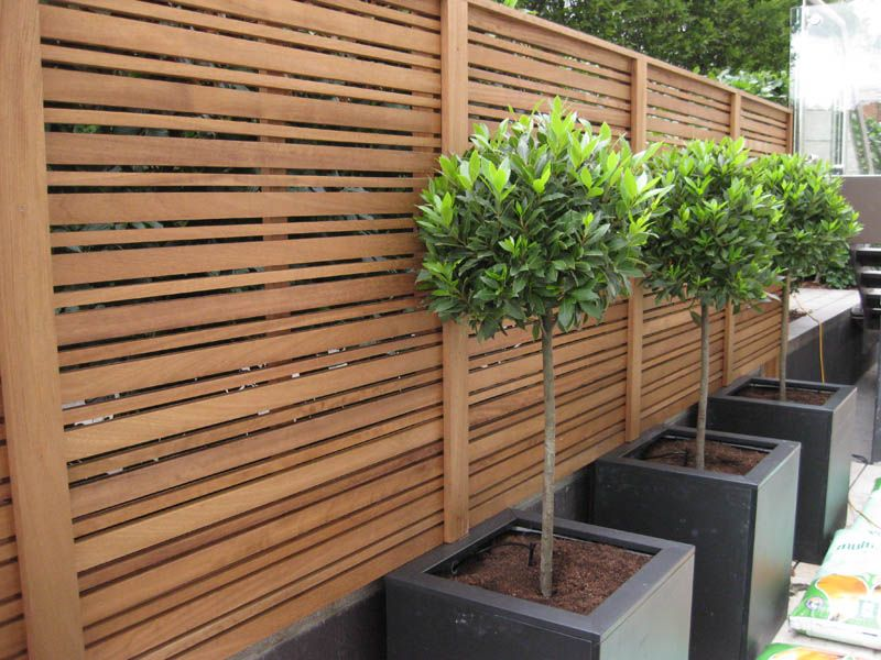trellis nz Google Search deck ideas Pinterest Decking
