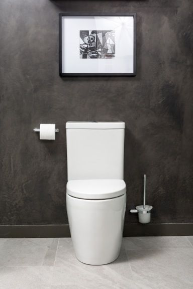Lifting the lid on luxury toilet design reno addict small bathroom pinterest toilet for Commode design luxe