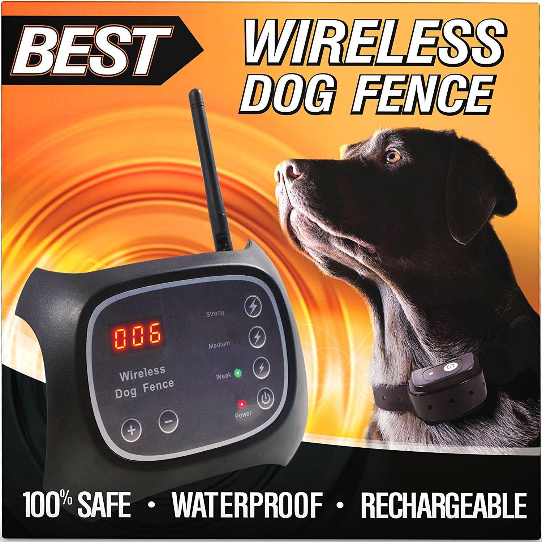 Amazon Com Best Wireless Dog Fence System 100 Safe Completely Wireless 2 Acre Range Easy Plug N Wireless Dog Fence Dog Fence Pet Containment Systems