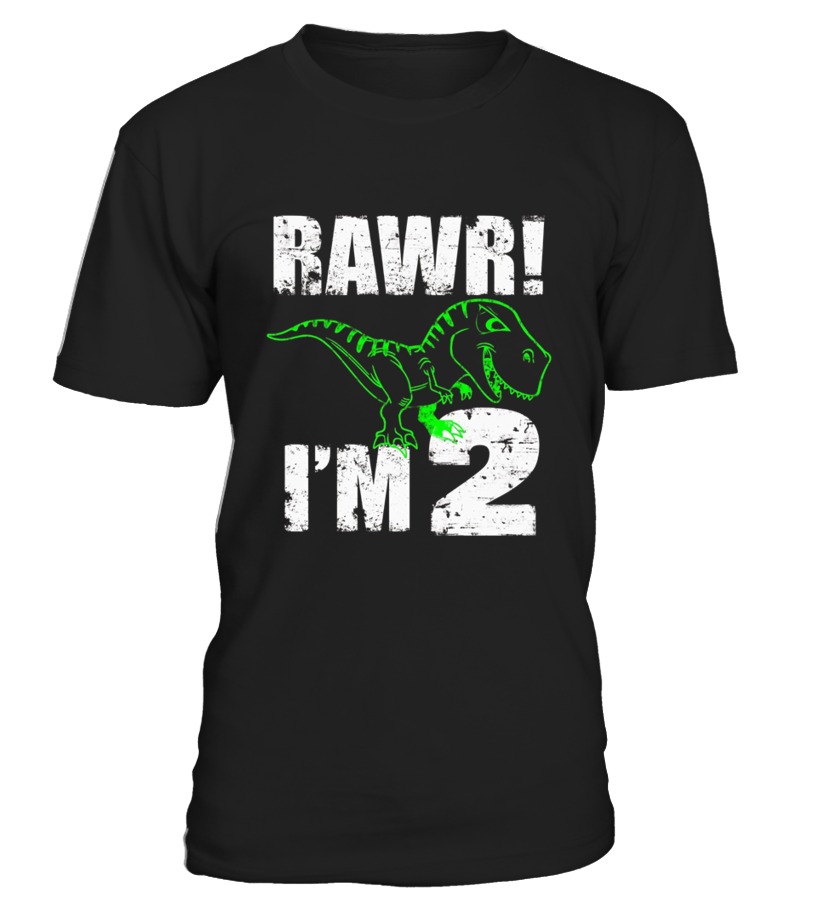 Kids 2nd Birthday Dinosaur Gift T shirt For 2 Year Old
