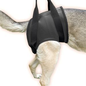Rehabilitation harness – Hind Size M (16NEO-HS/M)  Price: £45.00