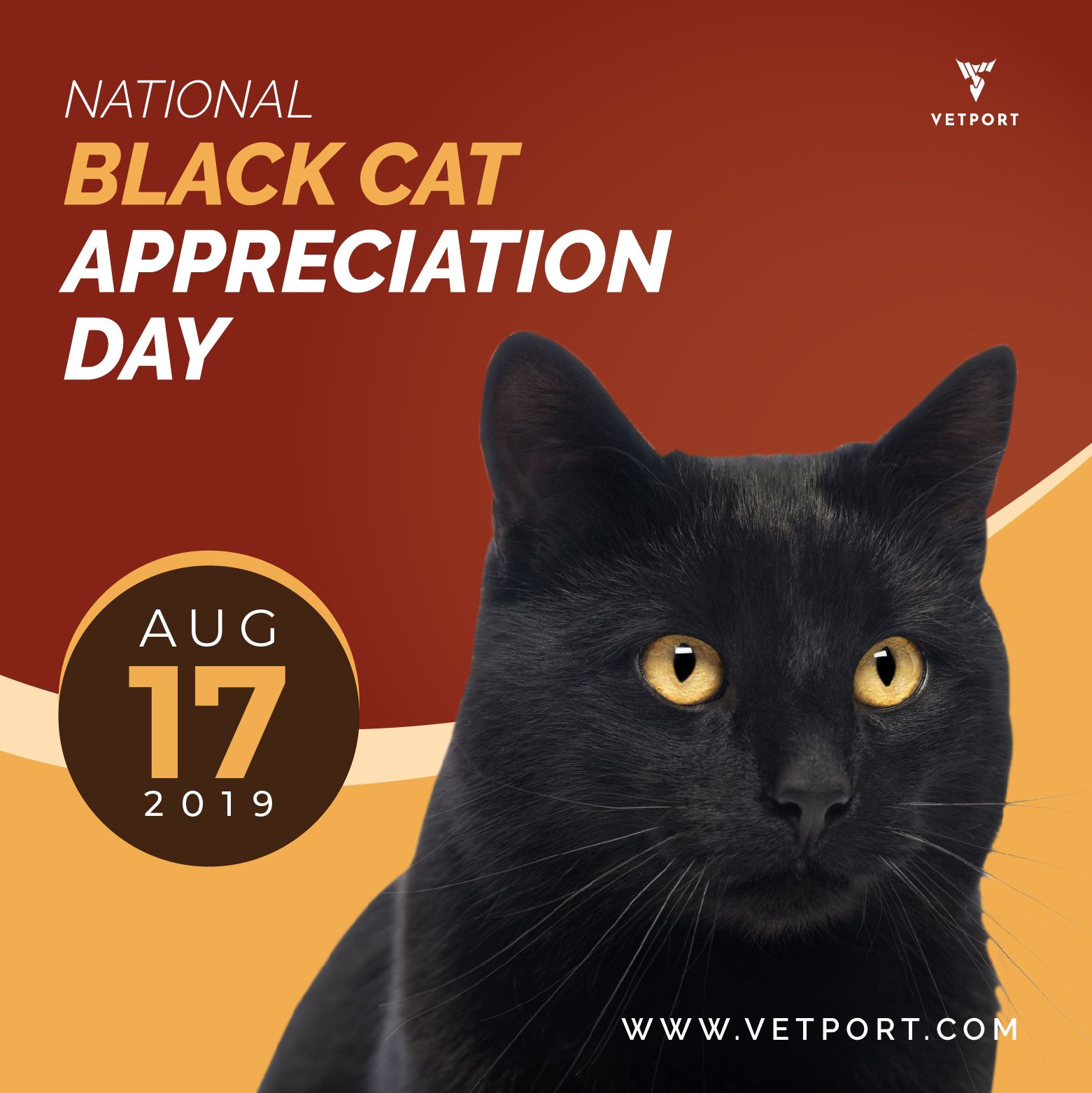 Black Cat Appreciation Day Black Cat Appreciation Day Black Cat Animal Lover