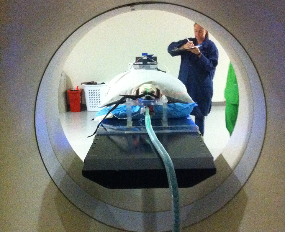 Tomotherapy Brings The Newest Technology In Radiation Therapy Lymphedema Exercises Lymphedema Dog Runny Nose