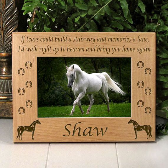 Arabian Horse Memorial Picture Frame