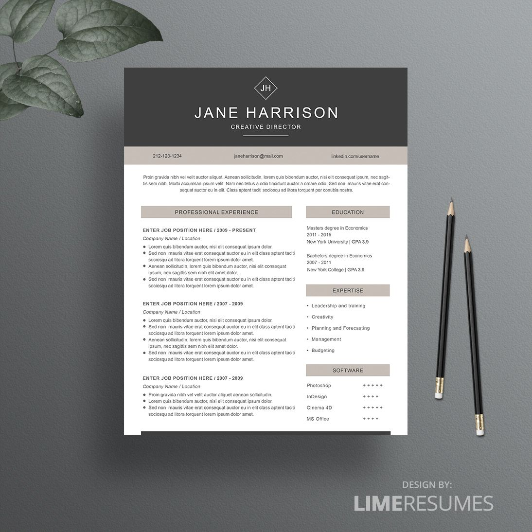 resume template 27