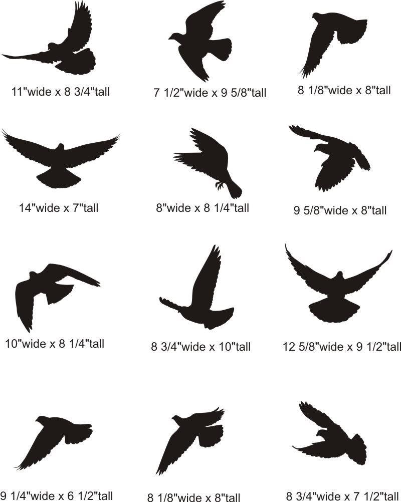 Resultado De Imagen Para Tattoo Diseños Aves Tatuajes Tatuaje
