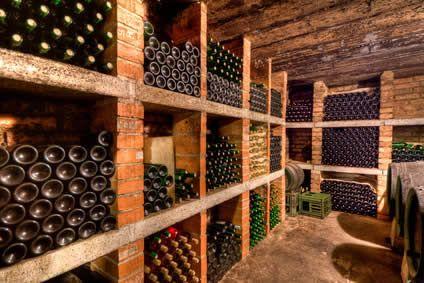 décoration cave vin | caves de rêves | Wine cellar, Wines et Cellar