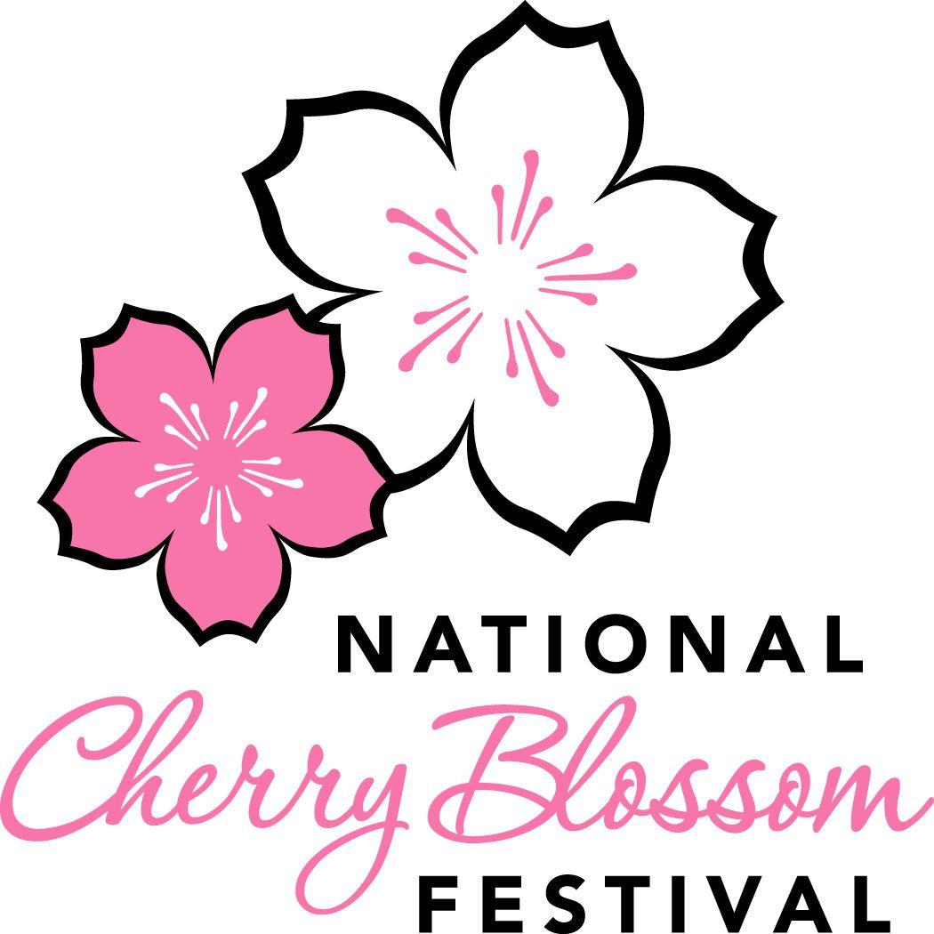 National Cherry Blossom Festival Parade Cherry Blossom Drawing Chinese Cherry Blossom Cherry Blossom Art