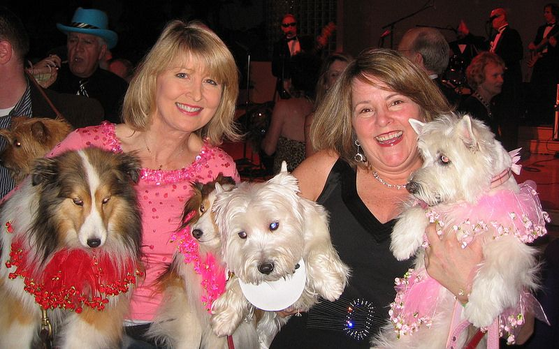 Kathy (w/Lillie & Daisy) & Pam (w/Ricky & Piper) @ The Bark & Whine Ball At The Giftcenter, San Francisco