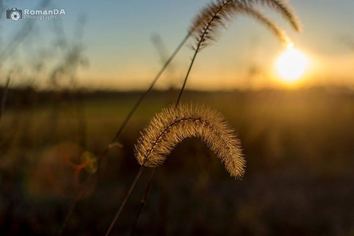 #RoCo #Rural @rowan_county_wx @WxBrad #nature #sunset   (c) 2016 RomanDA Photography - All Rights Reserved  sharelikecomment enjoy!