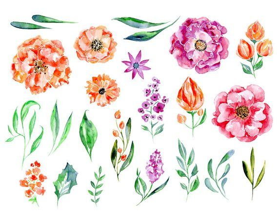 Watercolor Floral Clipart 23 Purple Red Pink Flowers Aquarelle