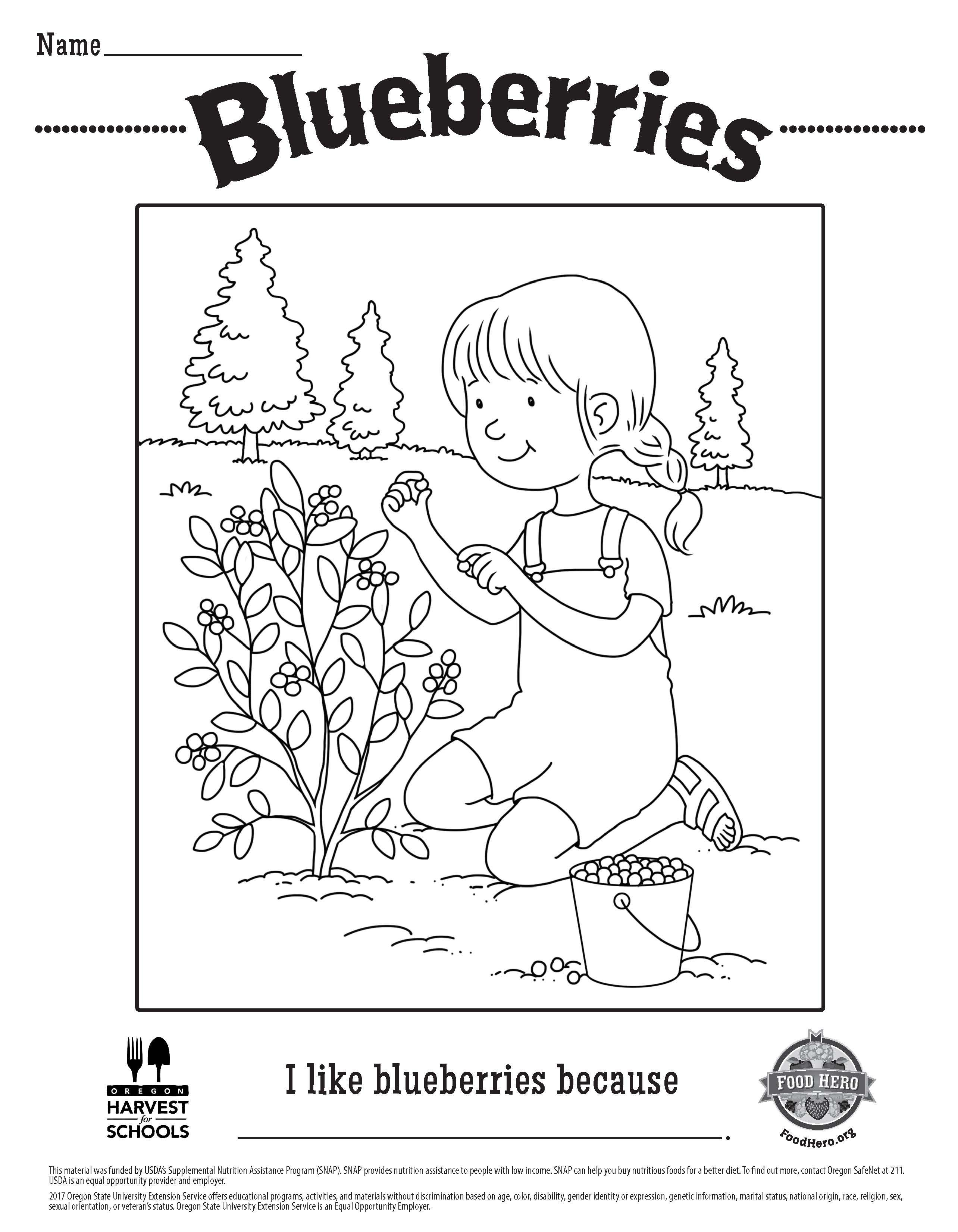 Blueberry Free Printable Childrens Coloring Sheet Food Hero Kids Page