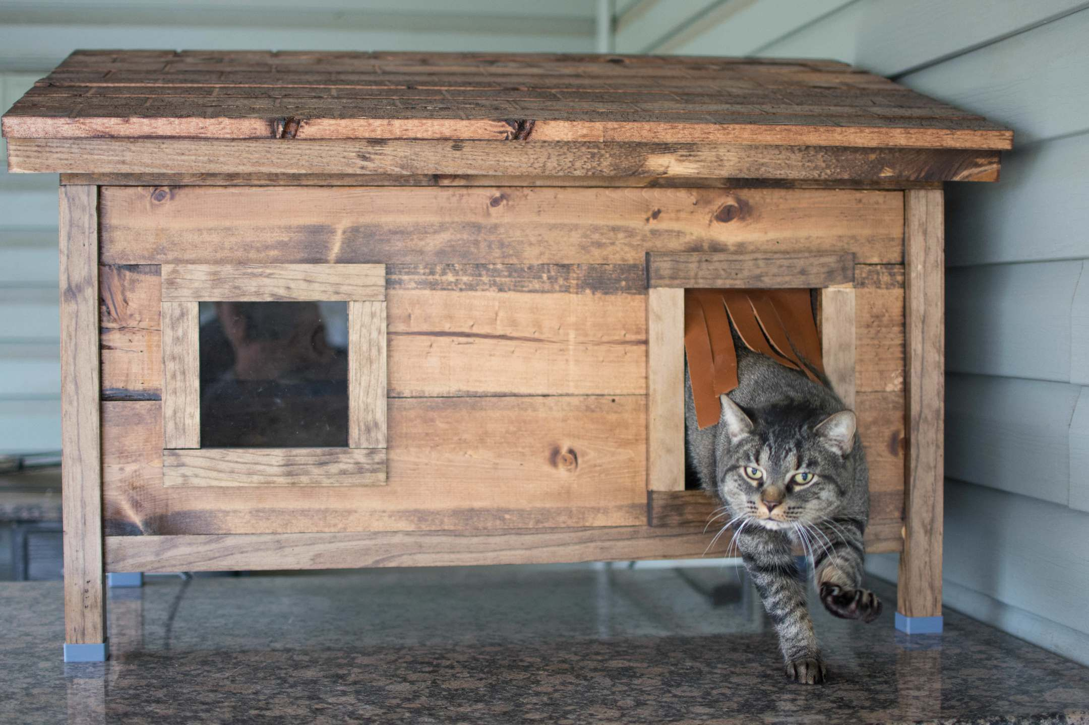 How To Build A Diy Outdoor Cat House Guide With Pictures Cluttter In 2020 Outdoor Cat House Cat House Diy Cat House Diy Cardboard
