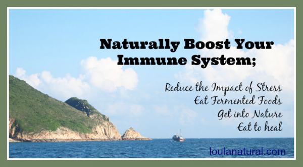 How Do I Naturally Boost My Immune System