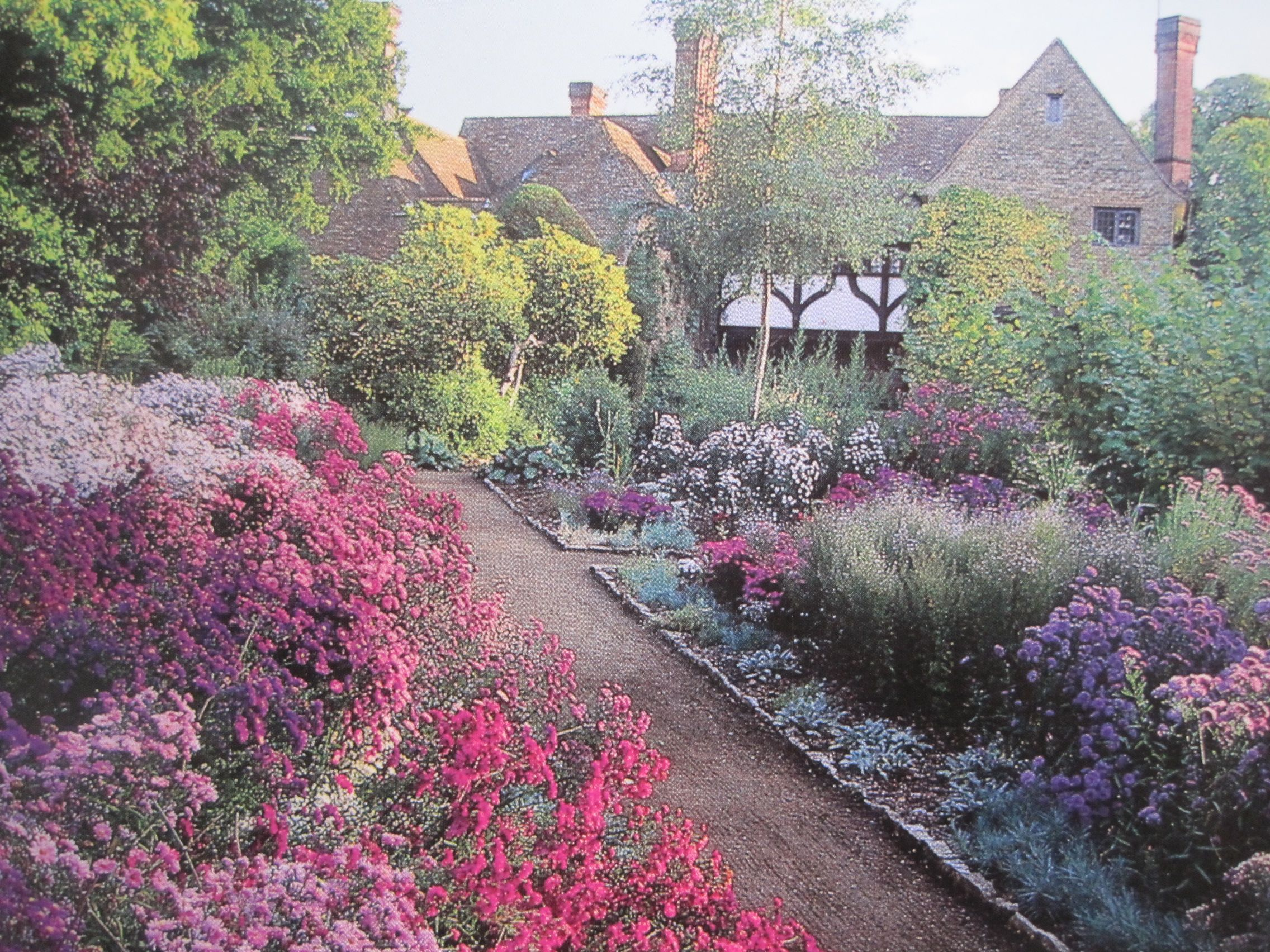 The Aster Border At Munstead Wood By By Gertrude Jekyll A Pioneer In Color Theory And The
