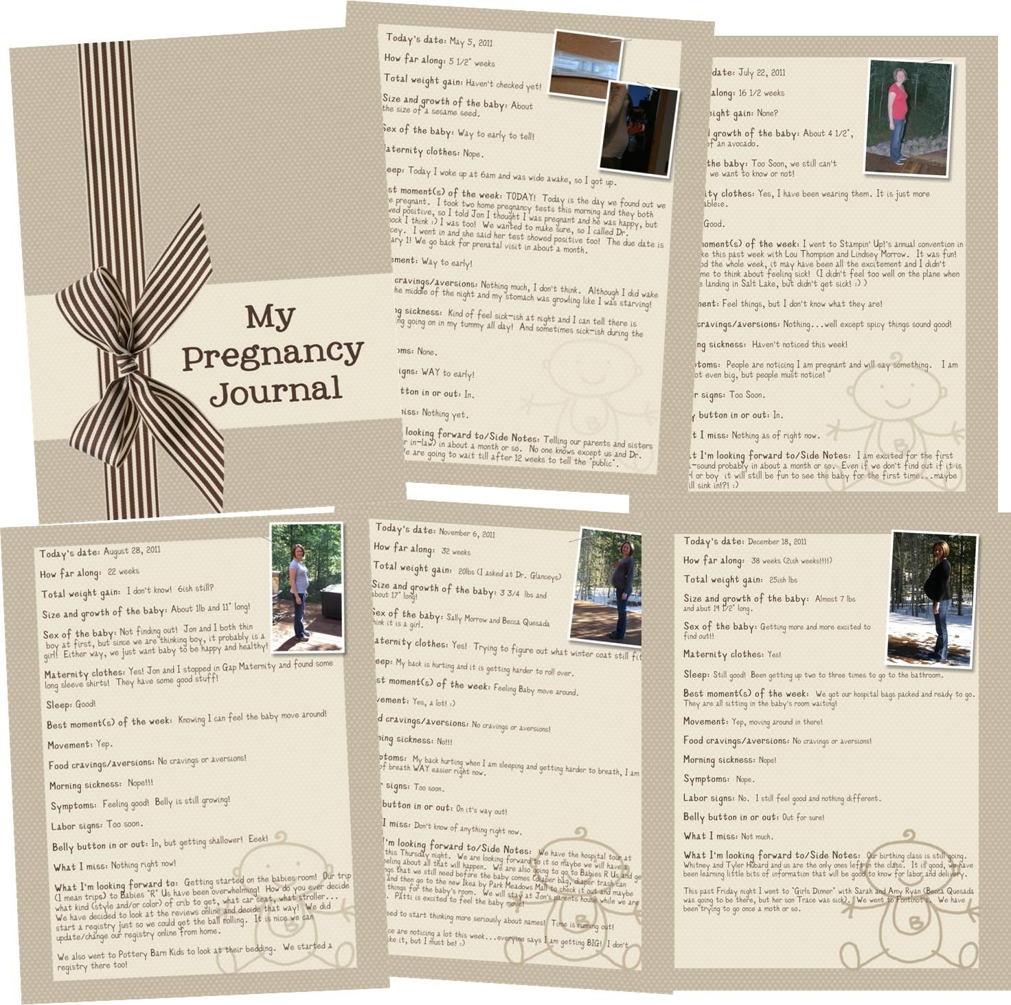Baby journal scrapbook ideas - Great Idea To Do A Pregnancy Journal By Rochelle Gould